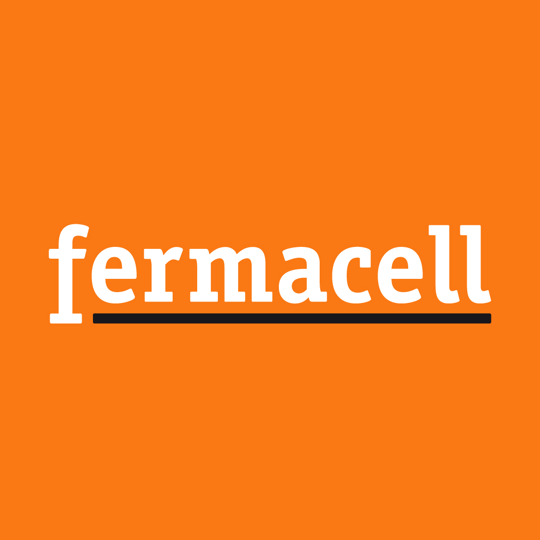 logo-fermacell-orange